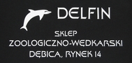 team delfin2